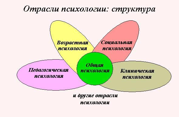 Характеристика социальной психологии как самостоятельной науки - Izhostel.ru